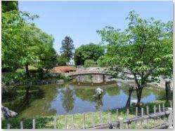 城跡公園の池